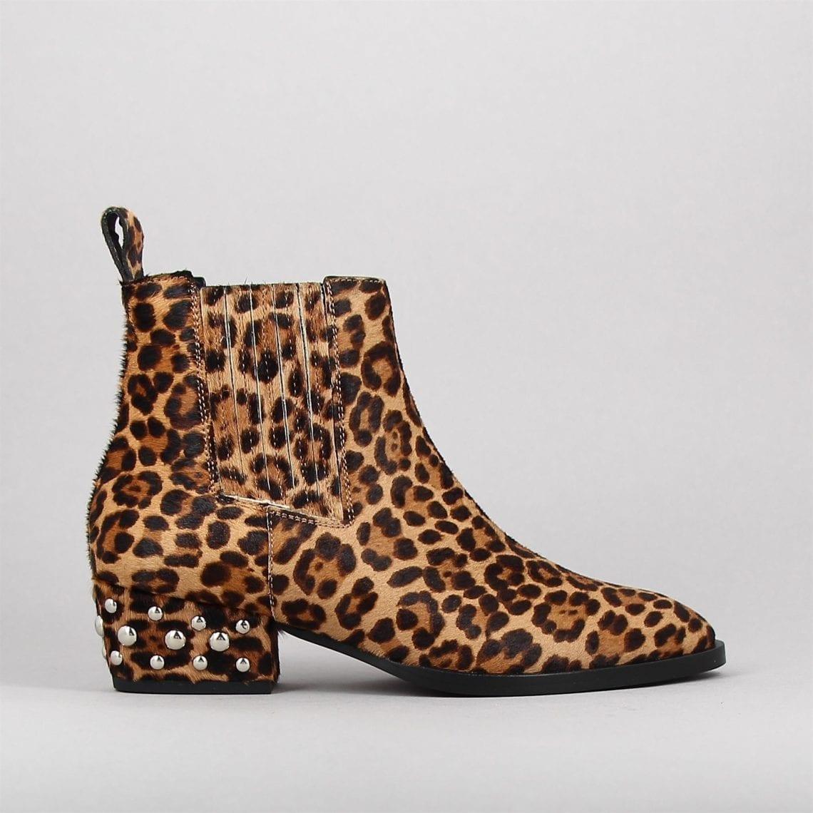 10967-h1819-leopard-3063815-0.jpg