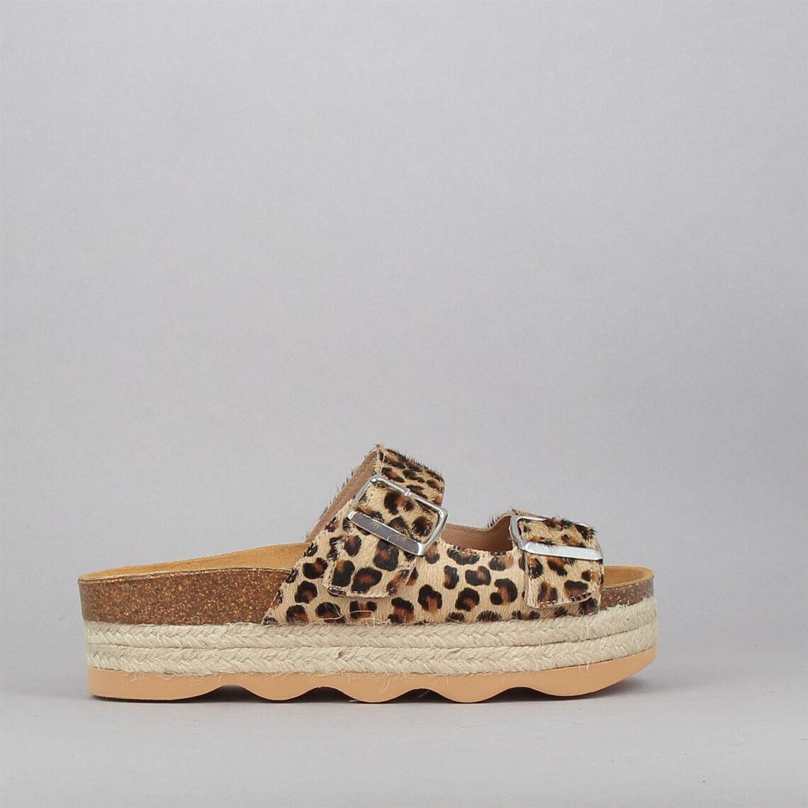 198011-leopard-177111042-0.jpg
