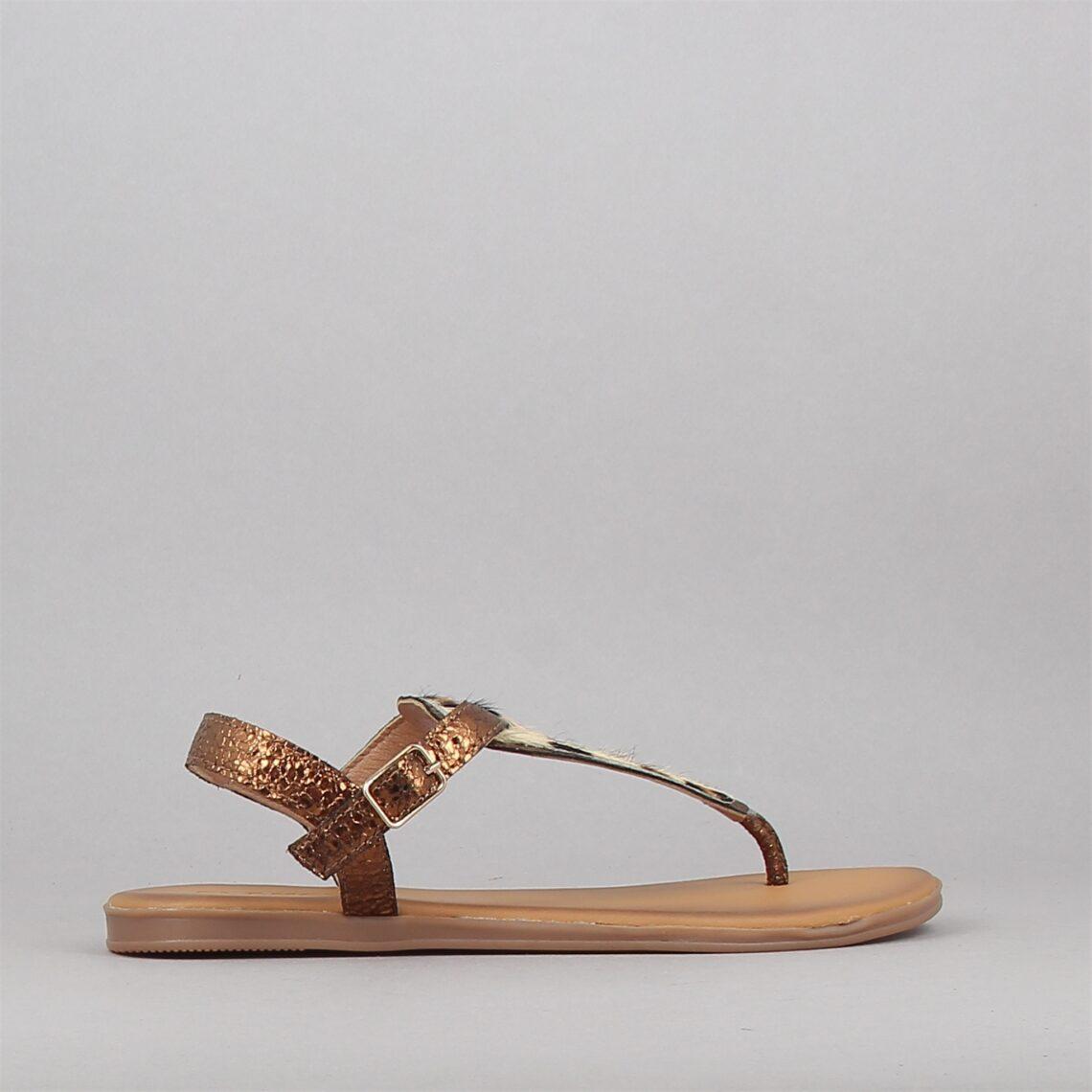 301029-bronze-169885698-0.jpg