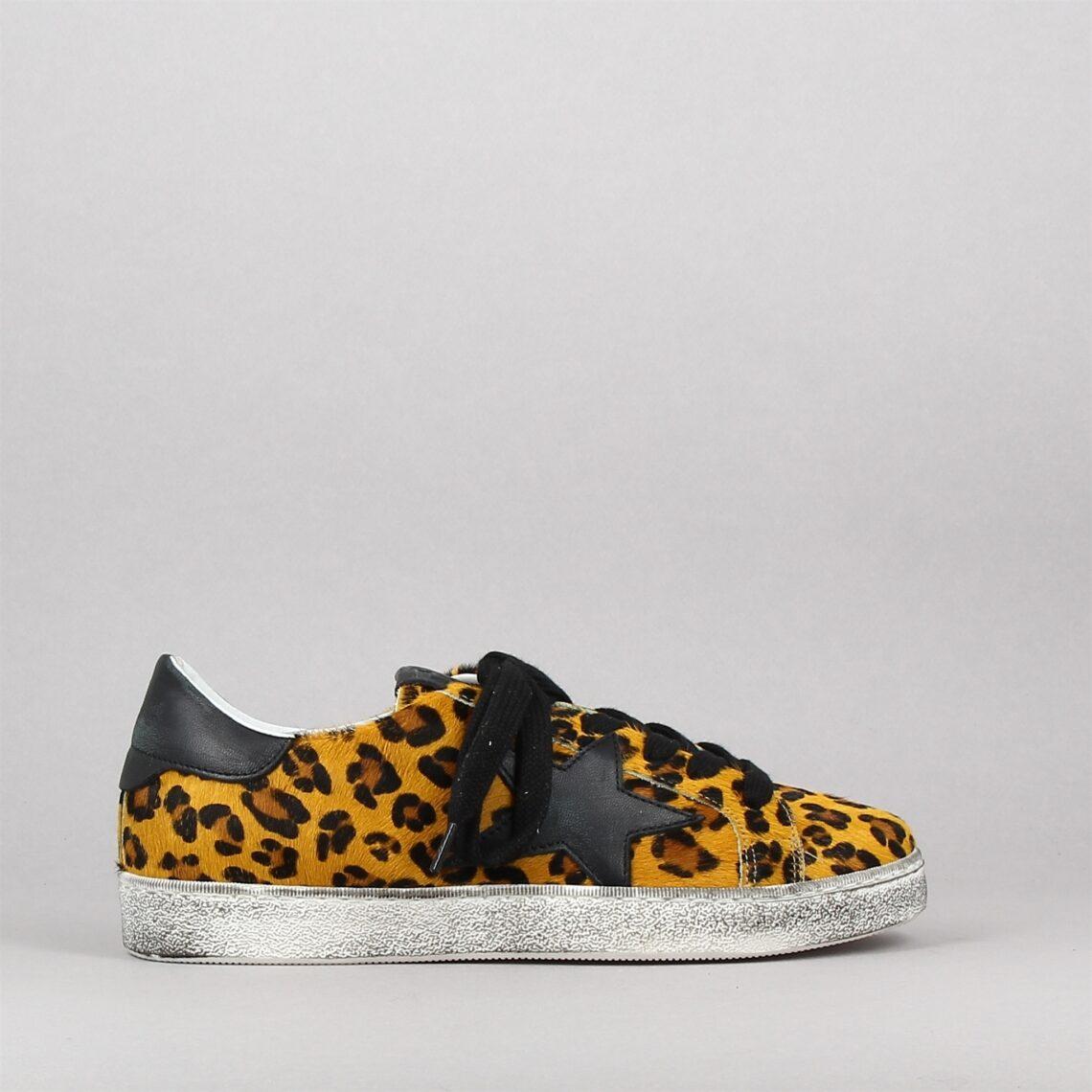 874z41-leopard-173735938-0.jpg