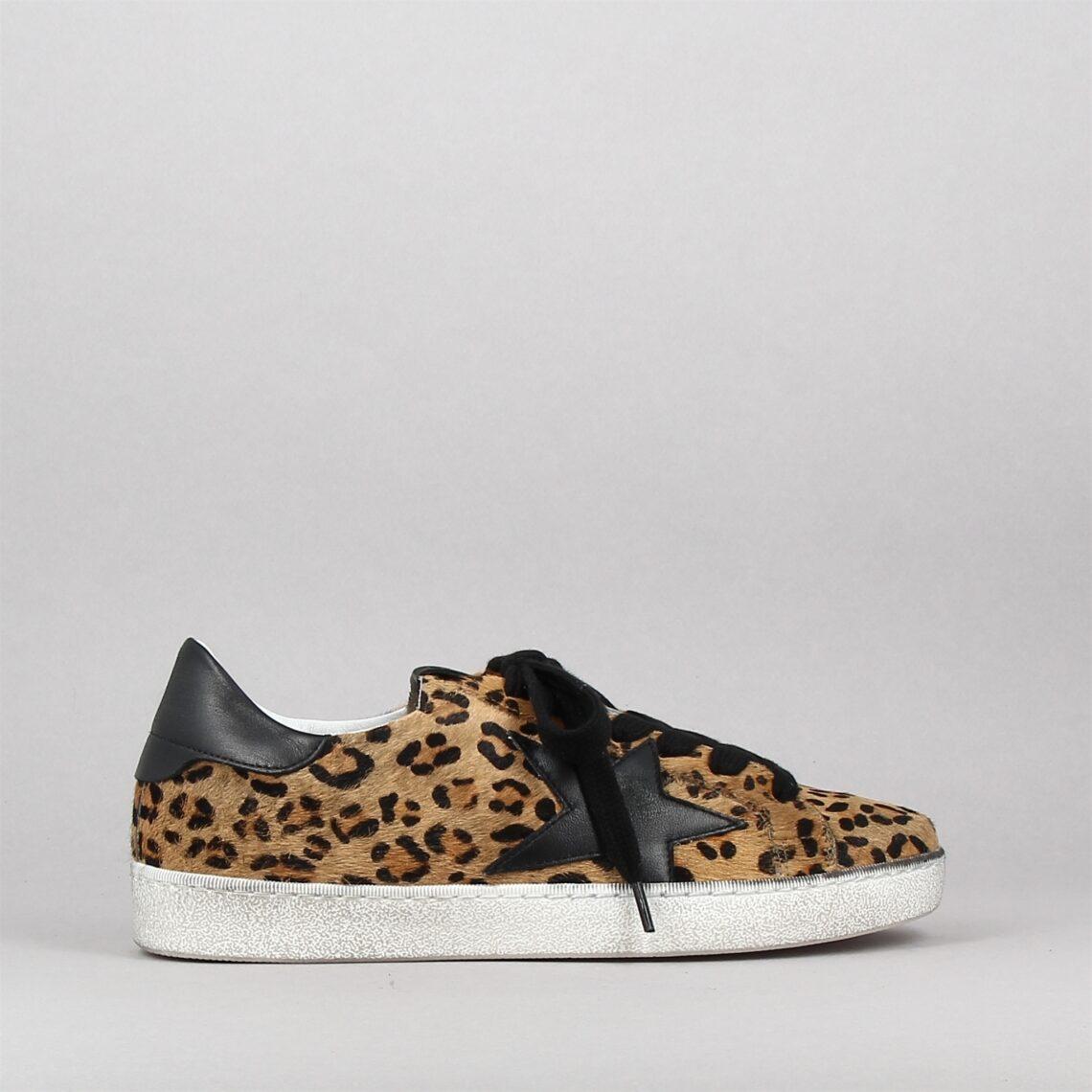 874z45-leopard-173768706-0.jpg