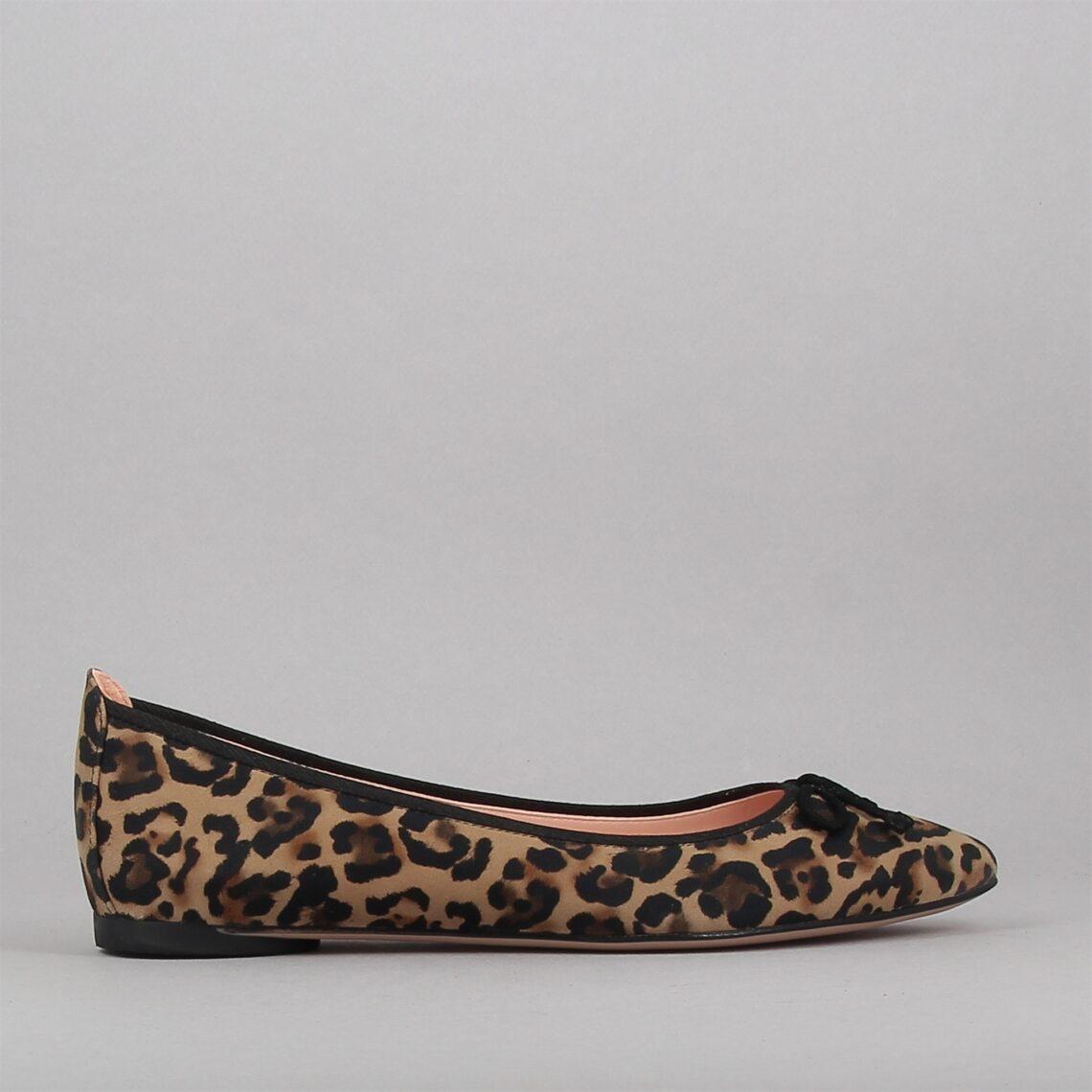areny-leopard-176062466-0.jpg