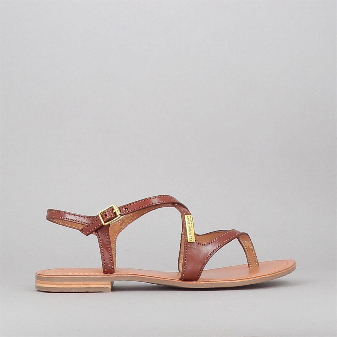 hedi-camel-174129154-0.jpg