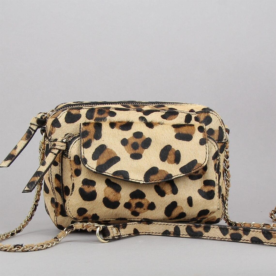 naino-leopard-2588676-0.jpg