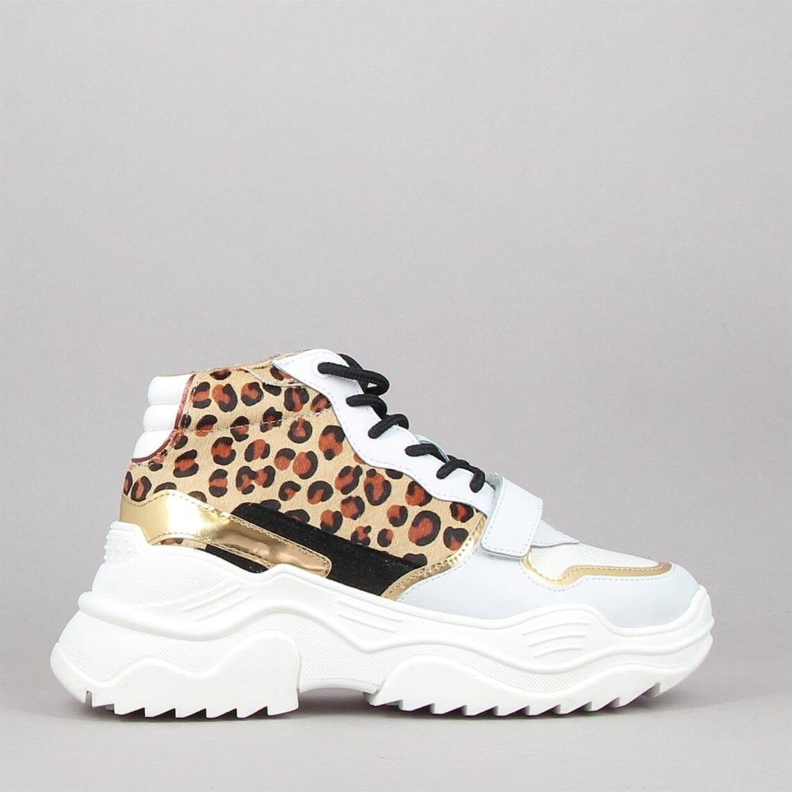 van-leopard-180518914-0.jpg