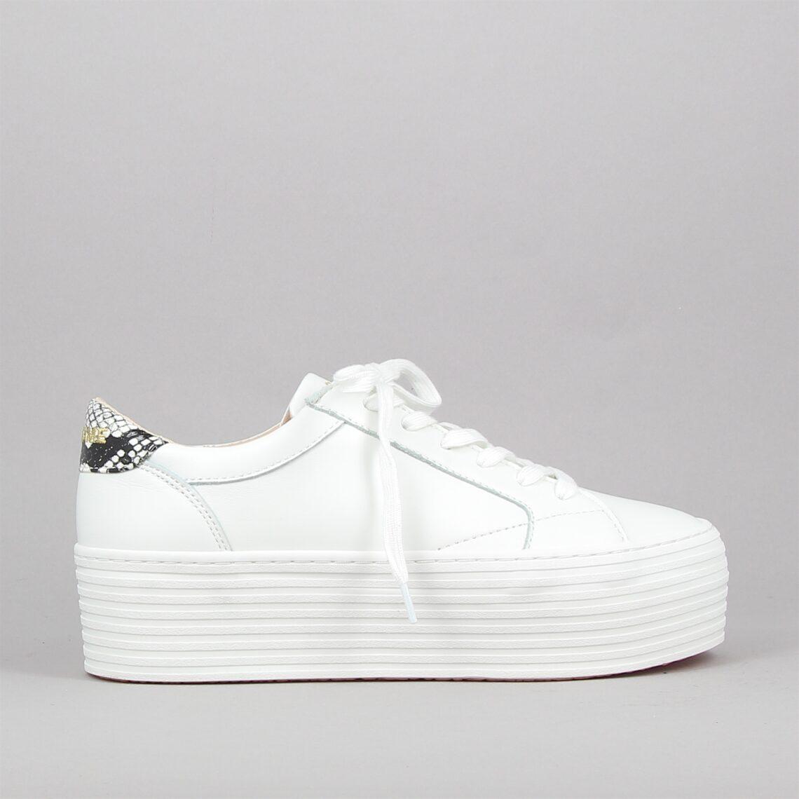 spice sneaker